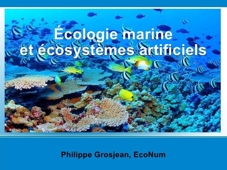 Philippe Grosjean, EcoNum Écologie marine et écosystèmes artificiels