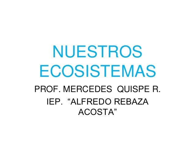 """NUESTROS ECOSISTEMAS PROF. MERCEDES QUISPE R. IEP. """"ALFREDO REBAZA ACOSTA"""""""
