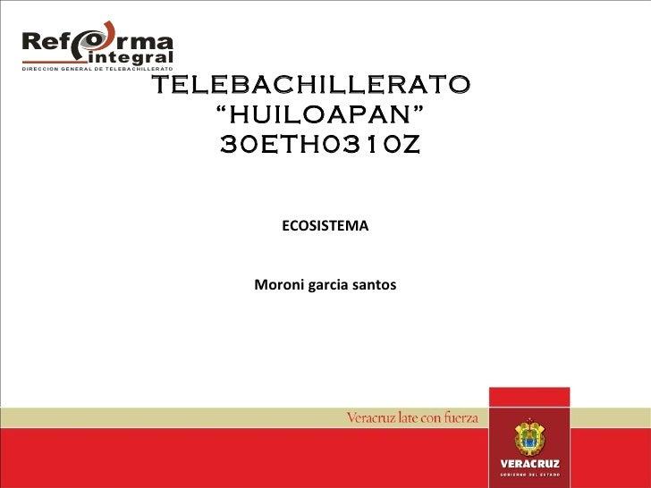 "TELEBACHILLERATO  ""HUILOAPAN"" 30ETH0310Z HUUHU ECOSISTEMA Moroni garcia santos"