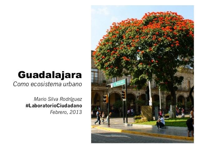 GuadalajaraComo ecosistema urbano       Mario Silva Rodríguez    #LaboratorioCiudadano              Febrero, 2013