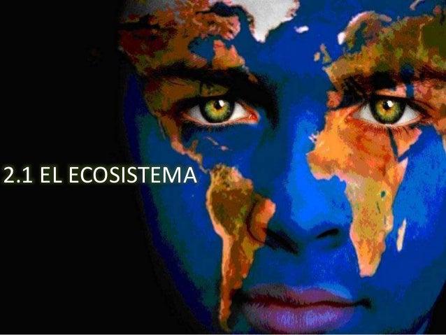 2.1 EL ECOSISTEMA