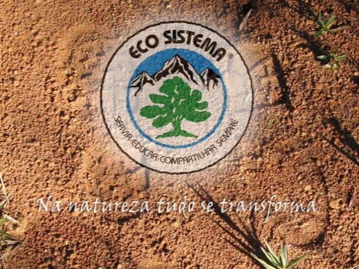 A ECO SISTEMAFundada em 1991 e formalizada em 1994, a ECO SISTEMA é uma   organização não-governamental na área de educaçã...