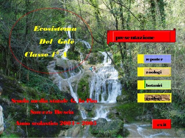 botanici zoologi Ecosistema Del Gelè Classe 1° A Scuola media statale G. La Pira Sarezzo Brescia Anno scolastico 2004 – 20...