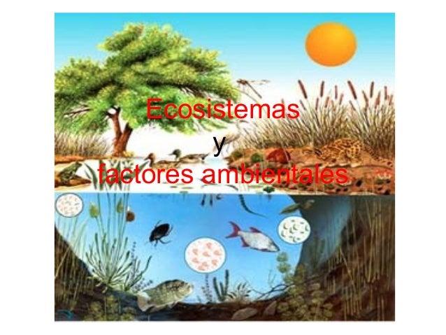 Ecosistemas y factores ambientales