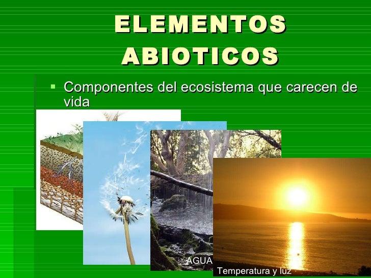 Ecosistema presentaci n for Elementos de un vivero