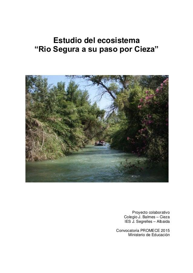 """Estudio del ecosistema """"Rio Segura a su paso por Cieza"""" Proyecto colaborativo Colegio J. Balmes – Cieza IES J. Segrelles –..."""