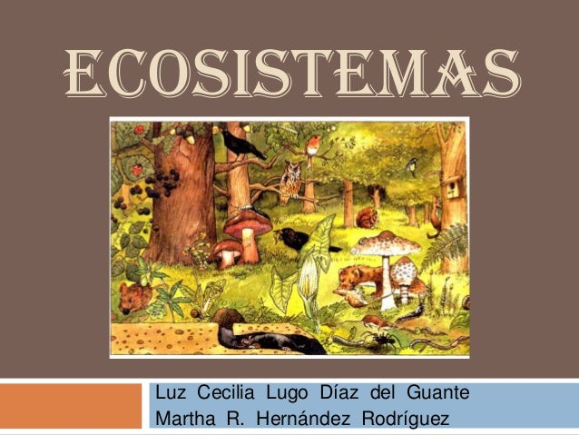 ECOSISTEMAS  Luz Cecilia Lugo Díaz del Guante  Martha R. Hernández Rodríguez