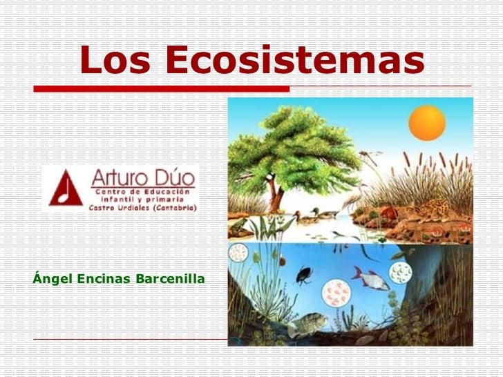 Los Ecosistemas Ángel Encinas Barcenilla