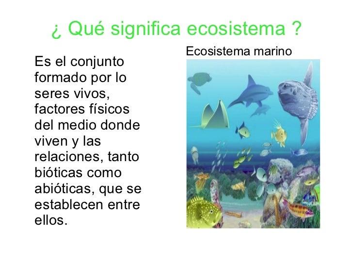 Ecosistemas for Que significa habitacion