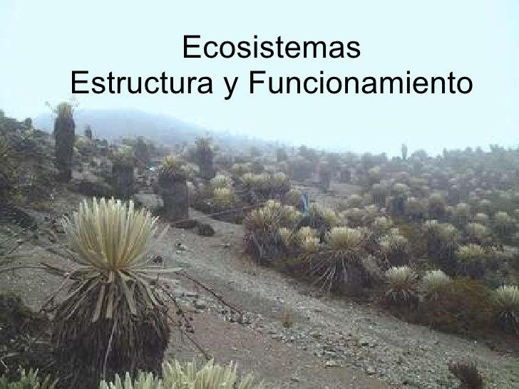 Ecosistemas Estructura y Funcionamiento