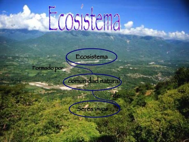 Ecosistema Ecosistema comunidad natural   Formado por Seres vivos de