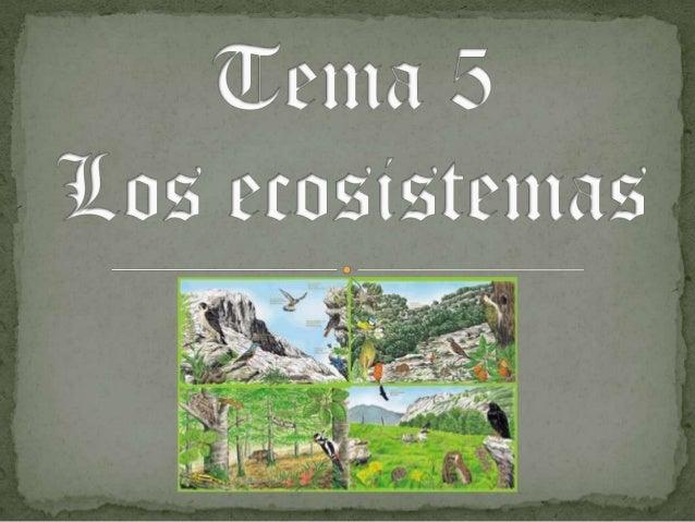 1. 2.  3. 4. 5. 6.  7. 8. 9. 10.  11.  La biosfera, la ecosfera y los ecosistemas Los componentes de los ecosistemas Inter...