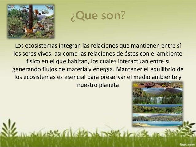 Ecosistemas for Medio en el que habitan los arboles