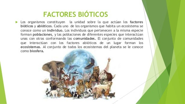Ecosistemas y factores que influyen en un ecosistema