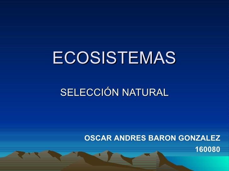 ECOSISTEMAS SELECCIÓN NATURAL OSCAR ANDRES BARON GONZALEZ 160080
