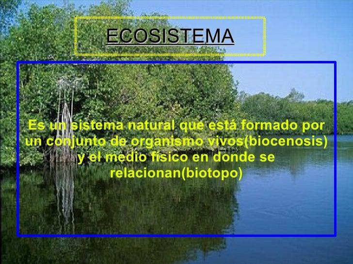 ECOSISTEMA Es un sistema natural que está formado por un conjunto de organismo vivos(biocenosis) y el medio físico en dond...