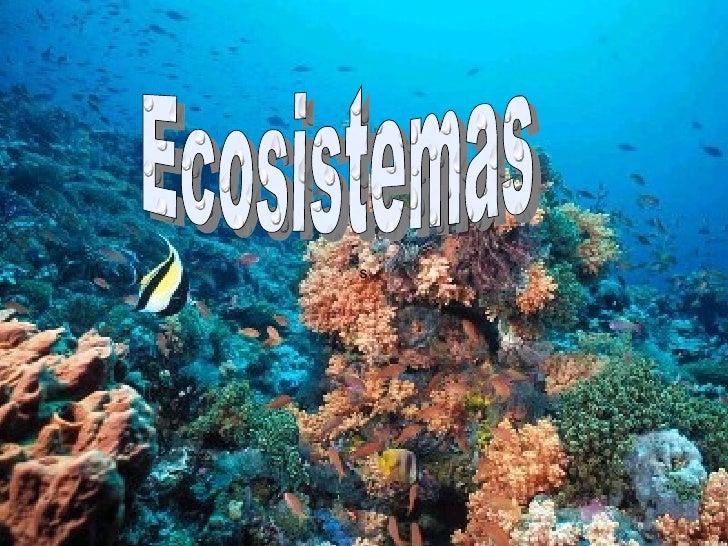 s Ecosistemas