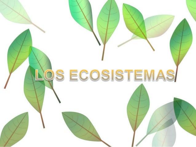 PARTES DE UN ECOSISTEMA Biotopo Biocenosis Relaciones entre Biotopo y Biocenosis