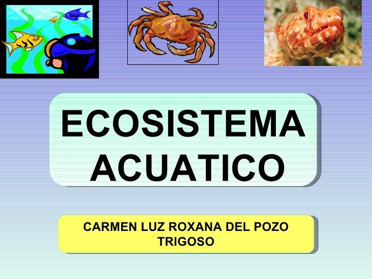 ECOSISTEMA  ACUATICO CARMEN LUZ ROXANA  DEL POZO TRIGOSO