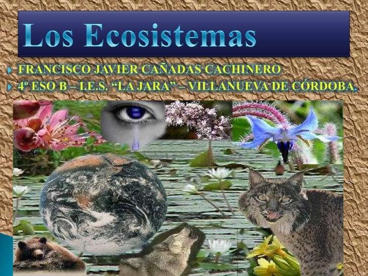"""Francisco Javier Cañadas Cachinero<br />4º ESO B – I.E.S. """"LA JARA"""" – Villanueva de Córdoba.<br />Los Ecosistemas<br />"""