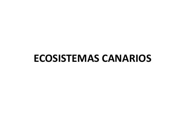 ECOSISTEMAS CANARIOS