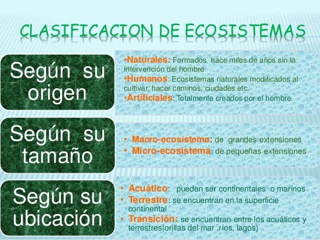 Ecosistemas Componentes Clasificacion