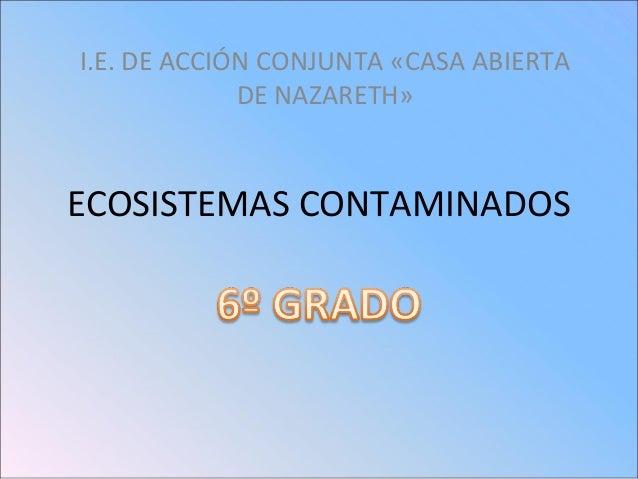 I.E. DE ACCIÓN CONJUNTA «CASA ABIERTA DE NAZARETH»  ECOSISTEMAS CONTAMINADOS