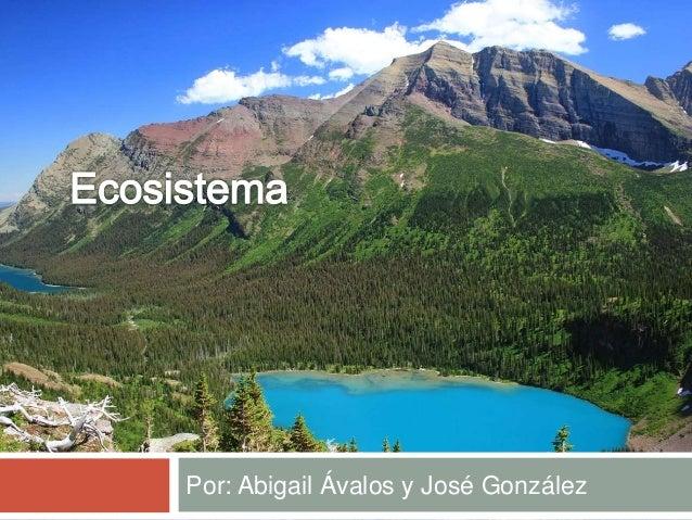 Por: Abigail Ávalos y José González