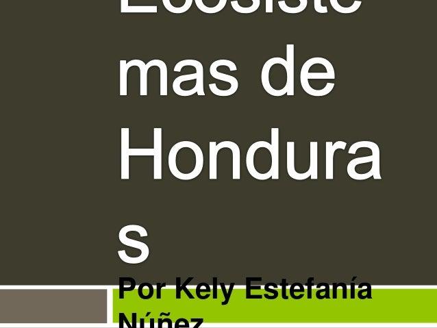 Por Kely Estefanía