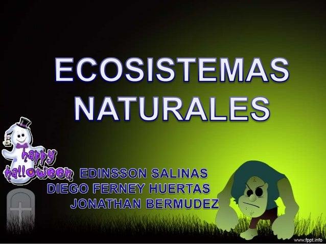 DEFINICIÓN DE ECOSISTEMA NATURALLos ecosistemas naturalesconformar el planeta en elque vivimos y también eluniverso entero...