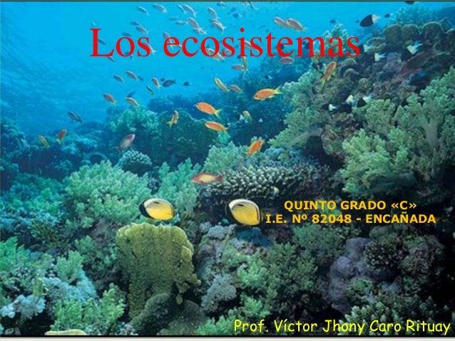 Los ecosistemas Prof. Víctor Jhony Caro Rituay QUINTO GRADO «C» I.E. Nº 82048 - ENCAÑADA