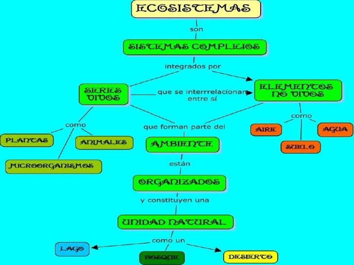 Ecosistemas y rr.nn. Slide 3