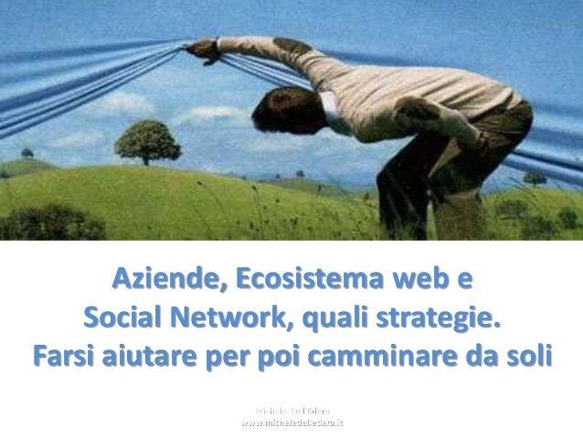 Aziende, Ecosistema web e Social Network, quali strategie. Farsi aiutare per poi camminare da soli Michele Dell'Edera www....