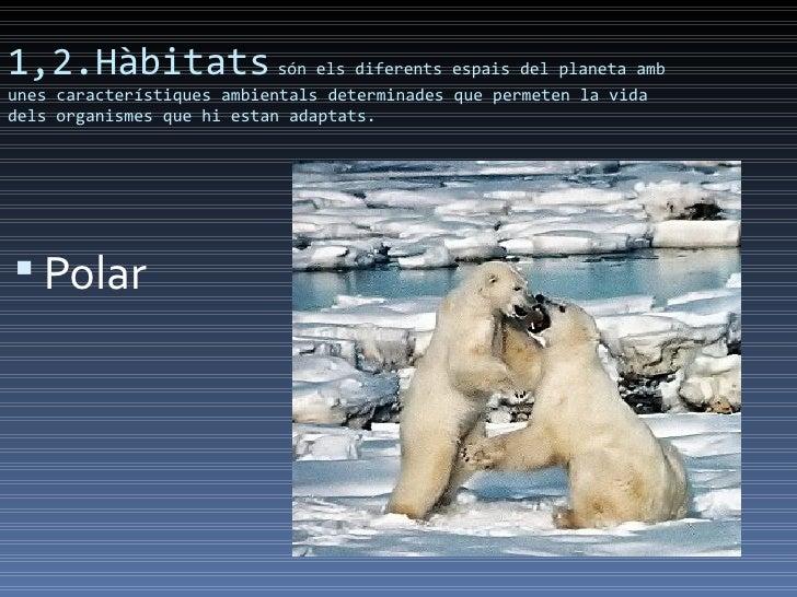 1,2.Hàbitats són els diferents espais del planeta ambunes característiques ambientals determinades que permeten la vidadel...