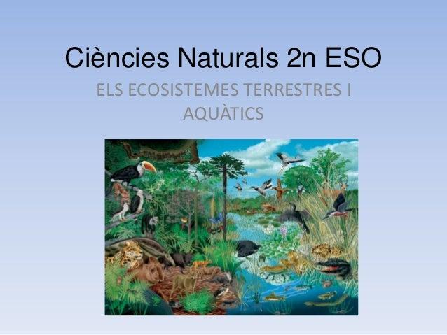 Ciències Naturals 2n ESO ELS ECOSISTEMES TERRESTRES I AQUÀTICS