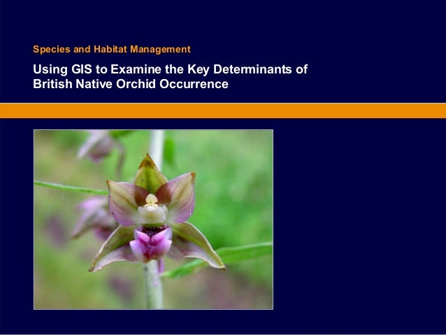 Species and Habitat Management  Using GIS to Examine the Key Determinants of  British Native Orchid Occurrence