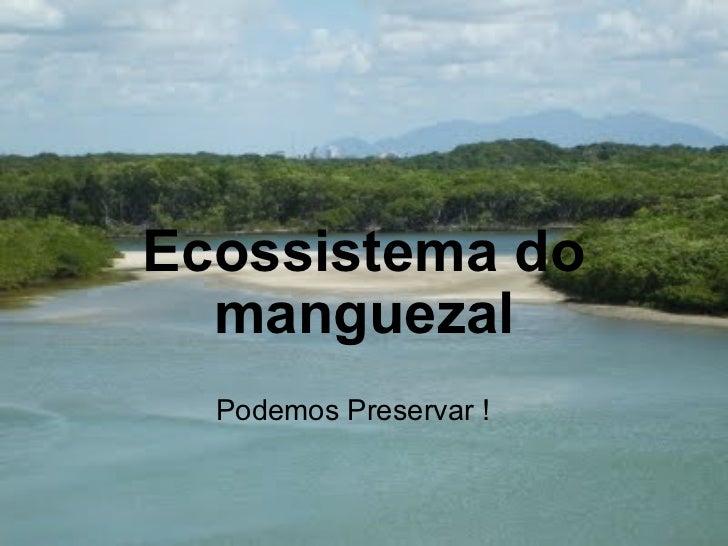 Ecossistema do manguezal Podemos Preservar !