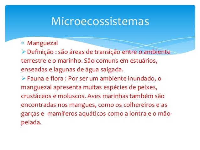  Manguezal Definição : são áreas de transição entre o ambiente terrestre e o marinho. São comuns em estuários, enseadas ...