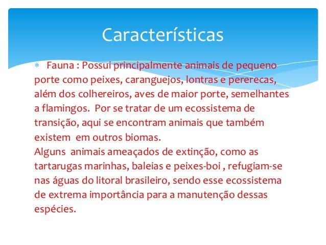  Fauna : Possui principalmente animais de pequeno porte como peixes, caranguejos, lontras e pererecas, além dos colhereir...