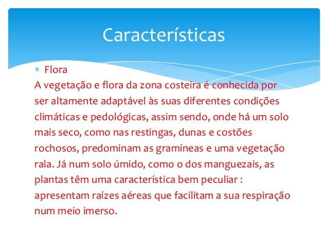  Flora A vegetação e flora da zona costeira é conhecida por ser altamente adaptável às suas diferentes condições climátic...
