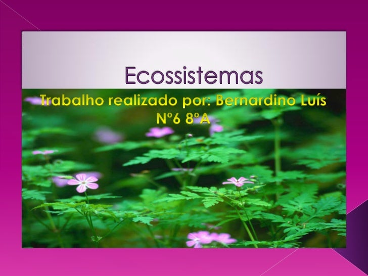    A ecologia é o estudo dos ecossistemas. A tarefa da    ecologia é compreender as interacções entre os    seres vivos e...