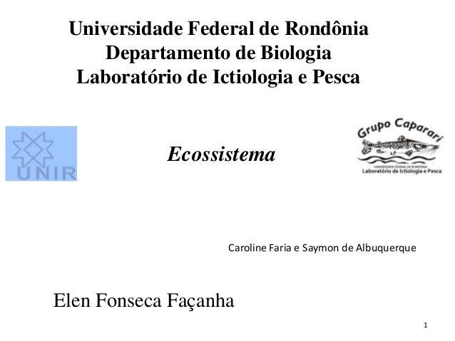 Universidade Federal de Rondônia     Departamento de Biologia  Laboratório de Ictiologia e Pesca            Ecossistema   ...