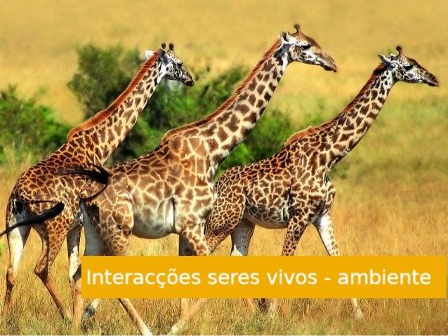 A Ecologia é o estudo dos ecossistemas. Esta ciência tenta compreender as interações entre os seres vivos e o ambiente e q...