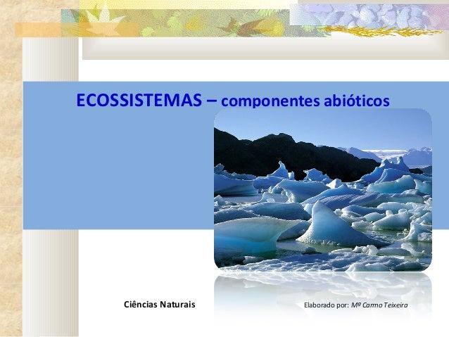 ECOSSISTEMAS – componentes abióticos                                                                                  ...
