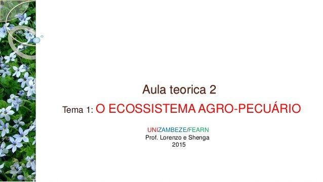 Aula teorica 2 Tema 1: O ECOSSISTEMA AGRO-PECUÁRIO UNIZAMBEZE/FEARN Prof. Lorenzo e Shenga 2015