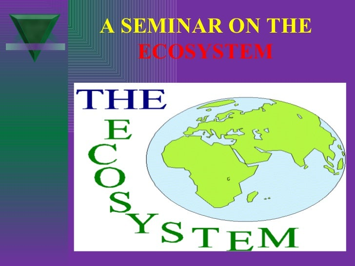 A SEMINAR ON THE   ECOSYSTEM