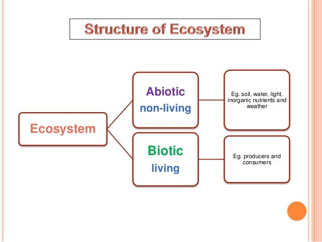 Ecosystem structure funstion and change