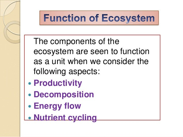 the biotic and abiotic structure and function of an ecosystem Scie210 unit 1 individual project investigate the biotic and abiotic structure and function of an ecosystem- tropical rainforest assignment name.