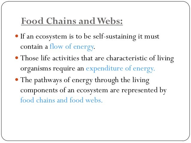 A.Food chain: involves the transfer of energy from green plants through a series of organisms with repeated stages of eati...