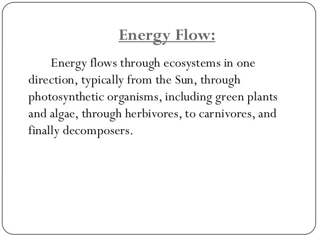 There is a decrease in the overall energyin each level as you move up the food web.  This means that there is much moree...